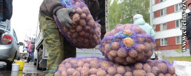 На сельскохозяйственные ярмарки в Набережные Челны привезли товаров на 41 миллион рублей