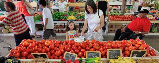 Сельхозпроизводители требуют создания традиционного рынка